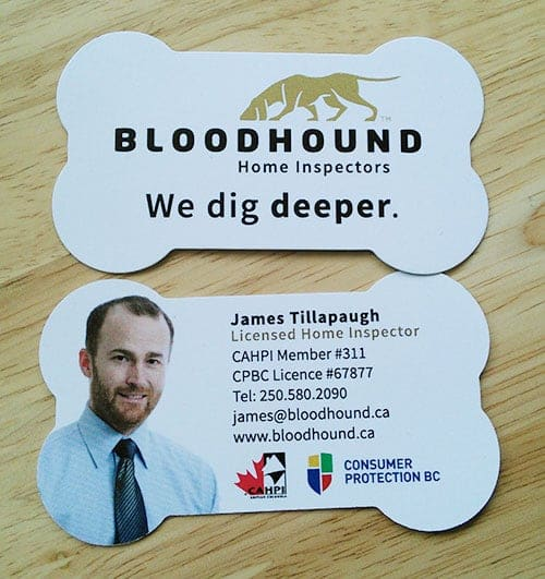 Bloodhound Business Cards